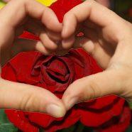 הפעלת להבת האיזמרגד – חיבור ללב הגבוה