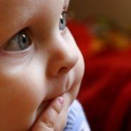 להתפתחות התינוק BioLove מרכז